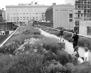 The Highline: Monument to Modern Ruin